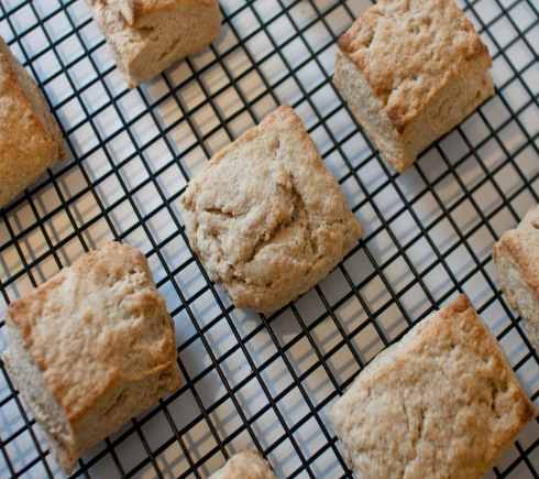 Whole Wheat Scones with Homemade Ricotta from freshandfoodie.com @freshandfoodie
