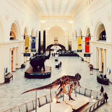 The Field Museum from freshandfoodie.com @freshandfoodie